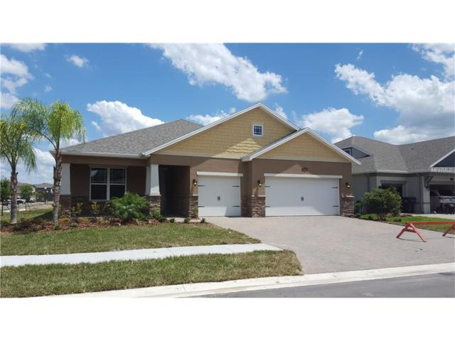 19004 Roseate #4507-65 Drive, Lutz, FL 33558 (MLS #T2872217) :: The Duncan Duo & Associates