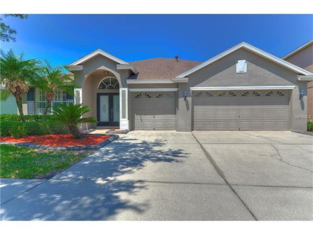 10518 Weybridge Drive, Tampa, FL 33626 (MLS #T2873465) :: The Duncan Duo & Associates