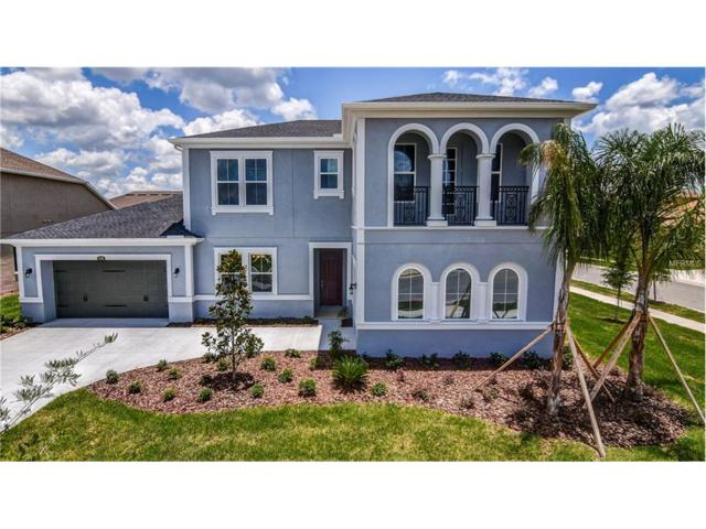 2108 Gwynhurst Boulevard, Wesley Chapel, FL 33543 (MLS #T2876904) :: The Duncan Duo & Associates