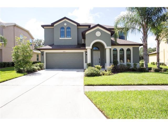 32216 Garden Alcove Loop, Wesley Chapel, FL 33545 (MLS #T2879168) :: The Duncan Duo & Associates