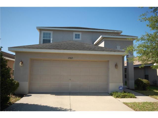 12805 Geneva Glade Drive, Riverview, FL 33578 (MLS #T2879651) :: The Duncan Duo & Associates