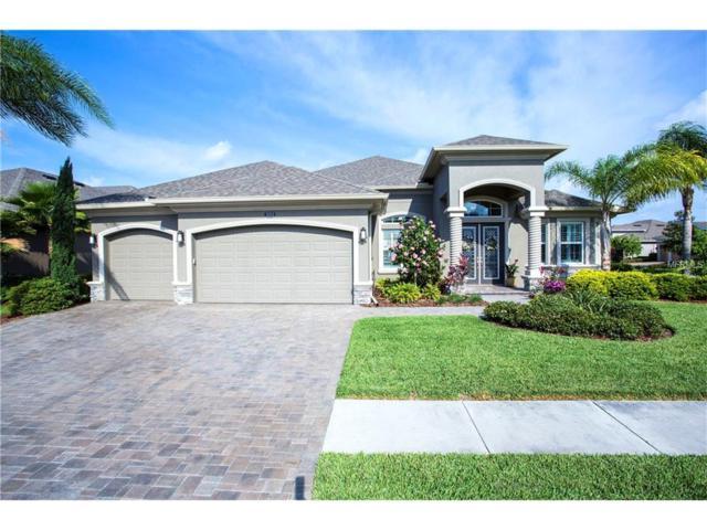 32512 Silvercreek Way, Wesley Chapel, FL 33545 (MLS #T2879770) :: The Duncan Duo & Associates