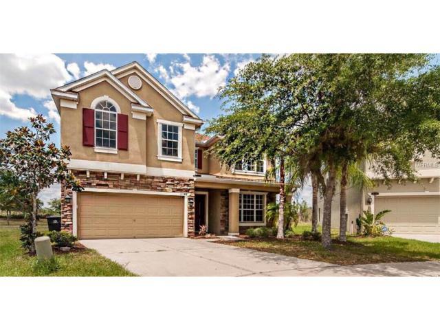 11148 Ancient Futures Drive, Tampa, FL 33647 (MLS #T2882665) :: The Lockhart Team