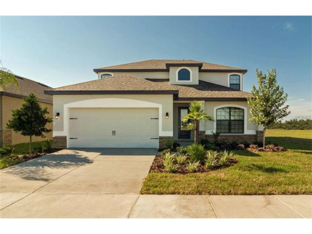 11810 Thicket Wood Drive, Riverview, FL 33579 (MLS #T2882707) :: The Duncan Duo & Associates