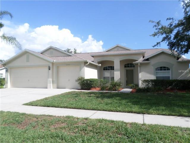 22142 Magnolia Trace Boulevard, Lutz, FL 33549 (MLS #T2883006) :: The Duncan Duo & Associates