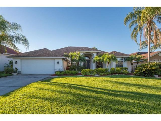 4319 Beau Rivage Circle, Lutz, FL 33558 (MLS #T2883868) :: The Duncan Duo & Associates