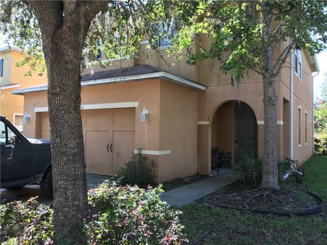 31633 Spoonflower Circle, Wesley Chapel, FL 33545 (MLS #T2884712) :: Team Bohannon Keller Williams, Tampa Properties