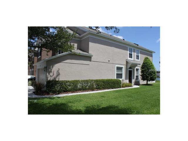 10107 Haverhill Ridge Drive, Riverview, FL 33578 (MLS #T2884742) :: The Duncan Duo & Associates