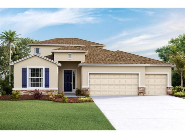 32334 Pinson Lane, Wesley Chapel, FL 33543 (MLS #T2885885) :: The Duncan Duo & Associates
