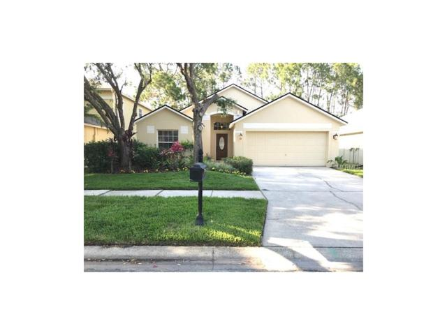 11849 Derbyshire Drive, Tampa, FL 33626 (MLS #T2887131) :: The Duncan Duo & Associates
