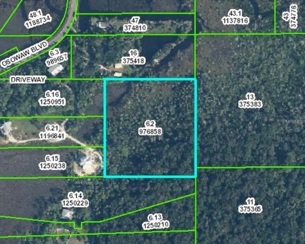 Osowaw Boulevard, Aripeka, FL 34679 (MLS #T2887491) :: Griffin Group
