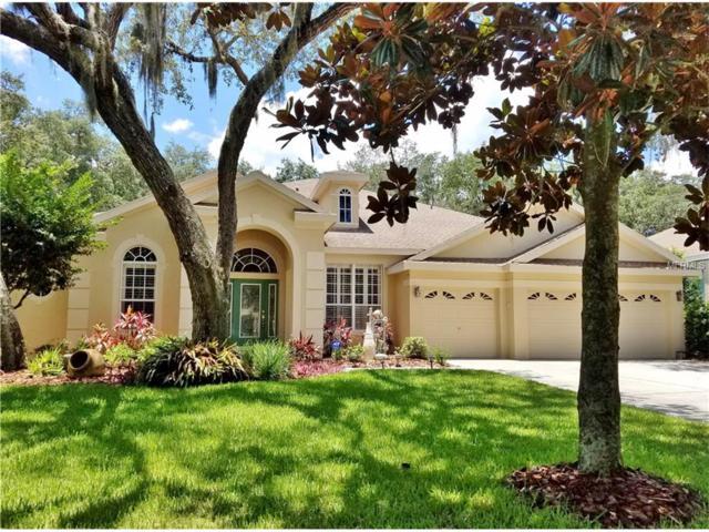 15914 Sorawater Drive, Lithia, FL 33547 (MLS #T2887676) :: The Duncan Duo & Associates