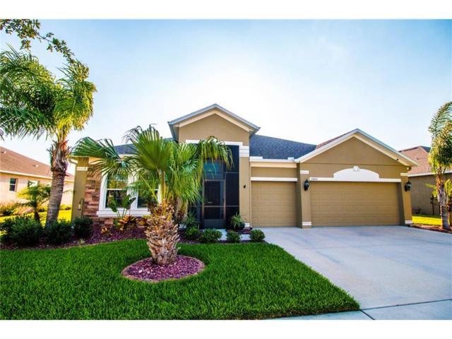13105 Graham Yarden Drive, Riverview, FL 33579 (MLS #T2887876) :: The Duncan Duo & Associates