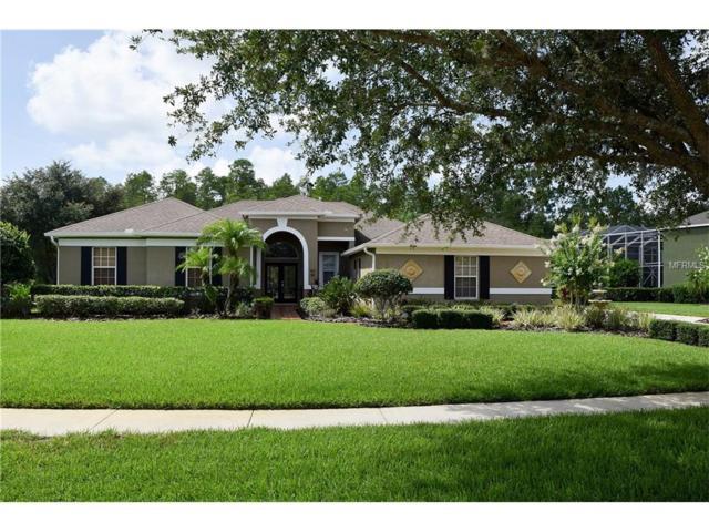 7546 Dunbridge Drive, Odessa, FL 33556 (MLS #T2888626) :: Griffin Group