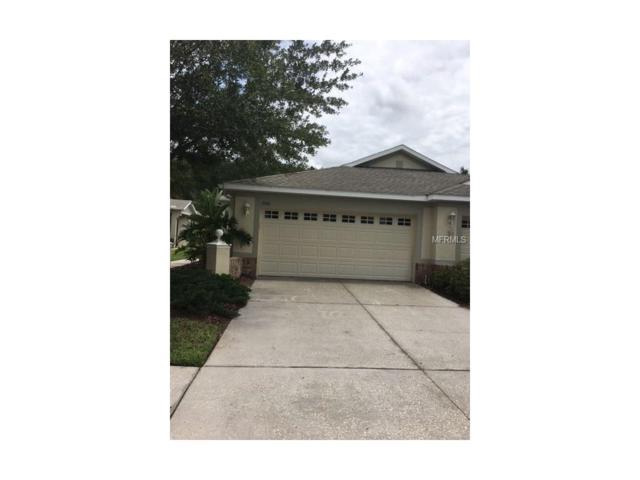 3506 Chapel Creek Circle, Wesley Chapel, FL 33544 (MLS #T2889470) :: The Duncan Duo & Associates