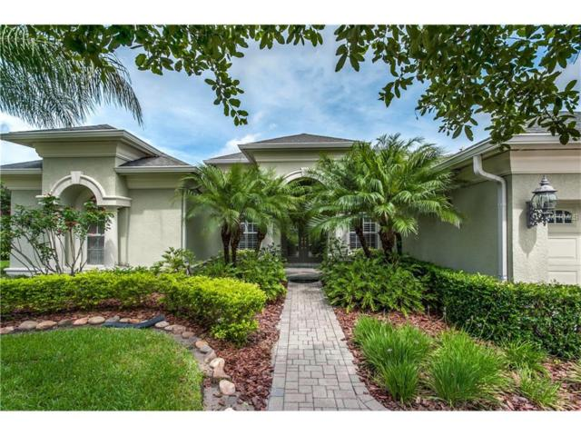 3153 Sheehan Drive, Land O Lakes, FL 34638 (MLS #T2889491) :: Griffin Group