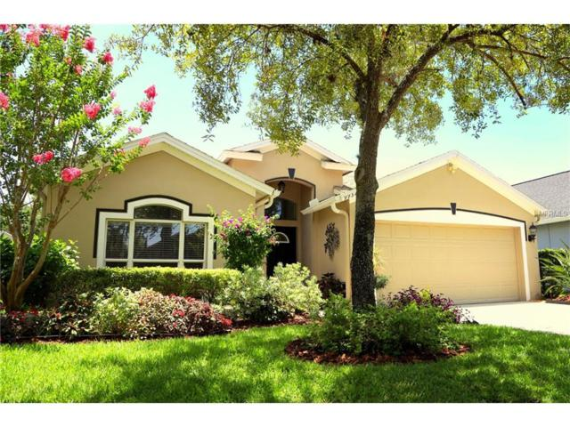 9932 Stockbridge Drive, Tampa, FL 33626 (MLS #T2889604) :: The Duncan Duo & Associates