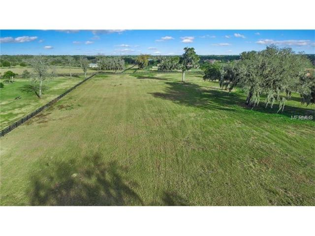 12249 Broadwater Loop Lot 130, Thonotosassa, FL 33592 (MLS #T2892246) :: Team Pepka
