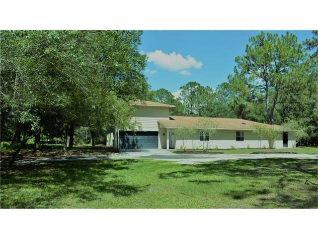 27123 Raven Brook Road, Wesley Chapel, FL 33544 (MLS #T2892645) :: The Duncan Duo & Associates