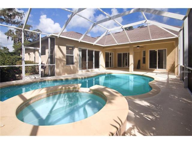 16005 Ternglade Drive, Lithia, FL 33547 (MLS #T2893166) :: The Duncan Duo & Associates
