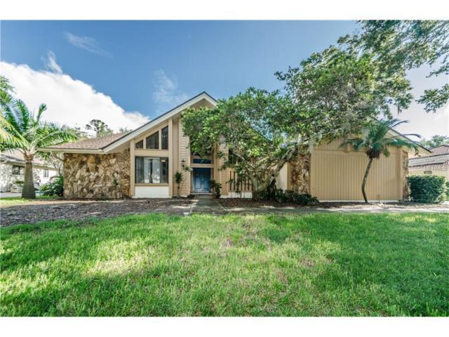 1509 Willow Brook Drive, Palm Harbor, FL 34683 (MLS #T2893201) :: Revolution Real Estate