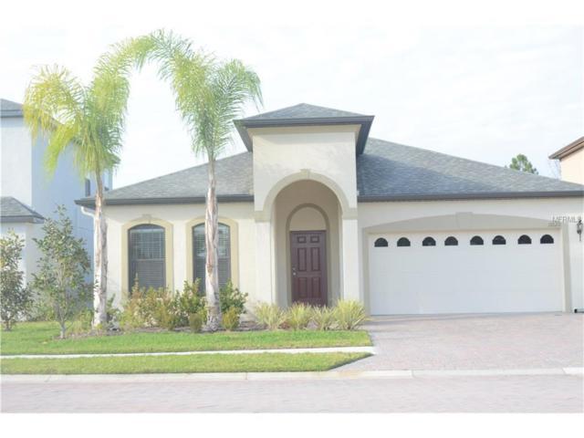 11020 Tahiti Isle Lane, Tampa, FL 33647 (MLS #T2895354) :: Team Bohannon Keller Williams, Tampa Properties