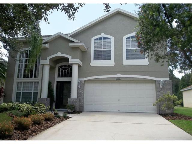 16906 Hawkridge Road, Lithia, FL 33547 (MLS #T2897429) :: The Duncan Duo & Associates