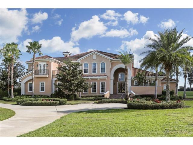 12253 Broadwater Loop, Thonotosassa, FL 33592 (MLS #T2897945) :: Premium Properties Real Estate Services