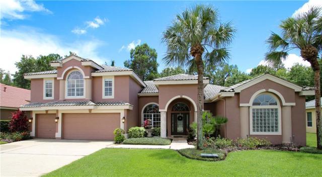 12006 Marblehead Drive, Tampa, FL 33626 (MLS #T2898001) :: Team Suzy Kolaz