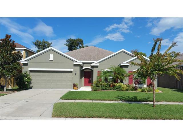1201 Parker Den Drive, Ruskin, FL 33570 (MLS #T2899434) :: Team Bohannon Keller Williams, Tampa Properties