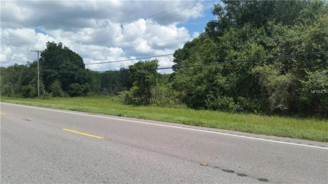 000 S Hwy 301, Wimauma, FL 33598 (MLS #T2902334) :: Burwell Real Estate