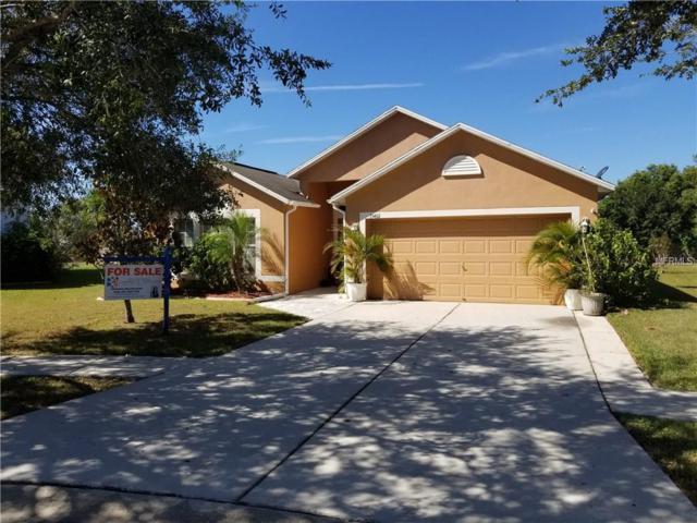13402 Copper Head Drive, Riverview, FL 33569 (MLS #T2902612) :: BCA Realty