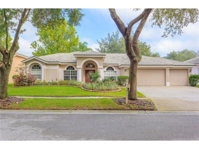 9355 Wellington Park Circle, Tampa, FL 33647 (MLS #T2903853) :: Cartwright Realty