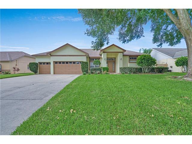 3954 Appletree Drive, Valrico, FL 33594 (MLS #T2904130) :: Team Bohannon Keller Williams, Tampa Properties