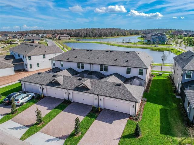 13023 Batten Lane, Odessa, FL 33556 (MLS #T2904208) :: Griffin Group