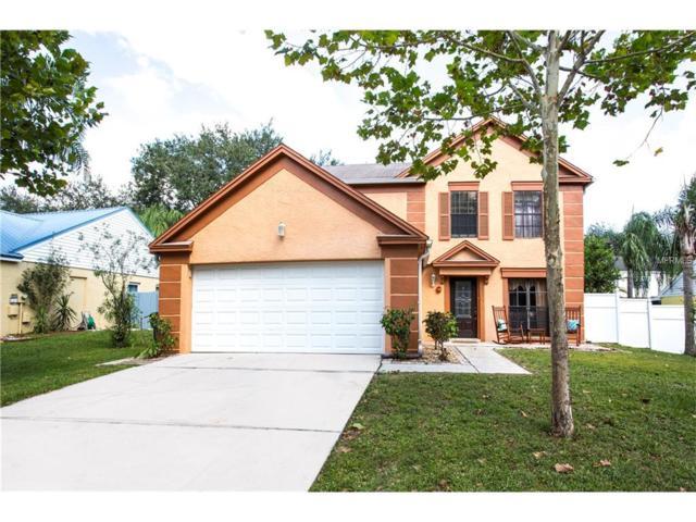2611 Drumwood Place, Valrico, FL 33596 (MLS #T2904538) :: Team Bohannon Keller Williams, Tampa Properties