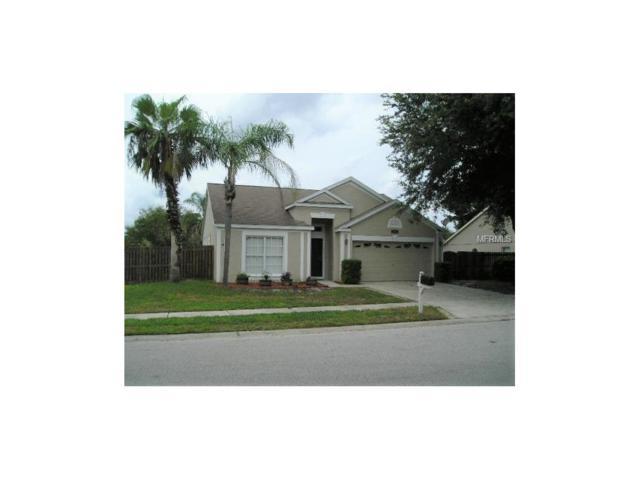 26827 Carla Place, Lutz, FL 33559 (MLS #T2905139) :: Griffin Group