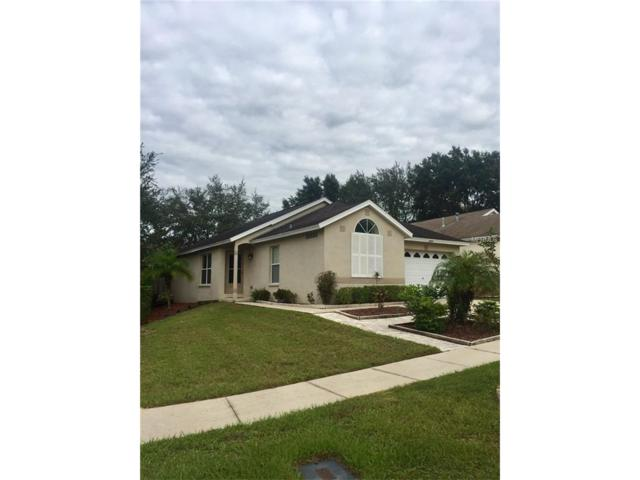 3404 Long Island Way, Valrico, FL 33594 (MLS #T2905243) :: Griffin Group