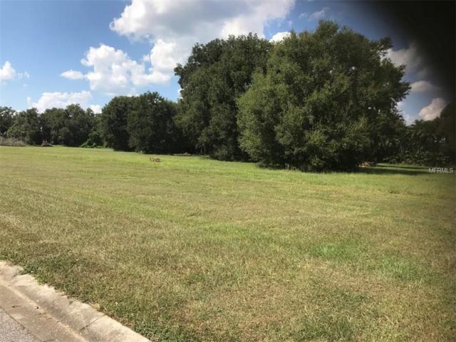 10920 Flint Estates Drive, Thonotosassa, FL 33592 (MLS #T2906133) :: The Duncan Duo Team