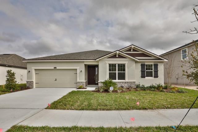 12215 Streambed Drive 90A, Riverview, FL 33579 (MLS #T2907240) :: The Lockhart Team