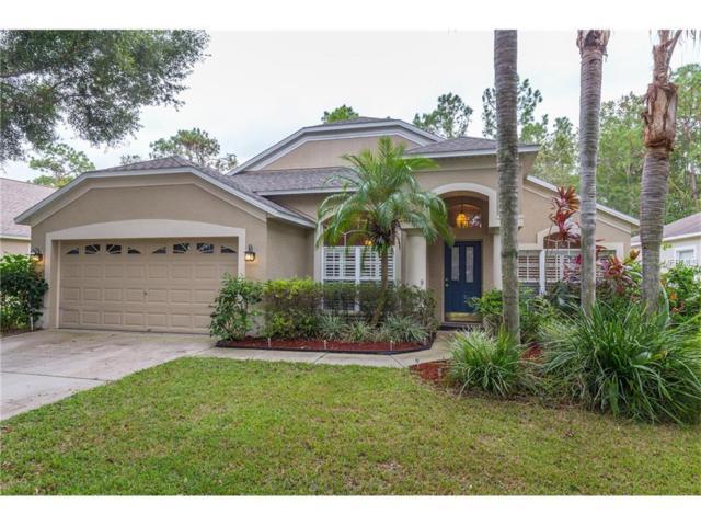 11830 Lancashire Drive, Tampa, FL 33626 (MLS #T2907425) :: The Duncan Duo & Associates
