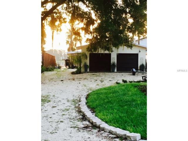 12036 Sandy Shores Drive, Windermere, FL 34786 (MLS #T2907517) :: Griffin Group
