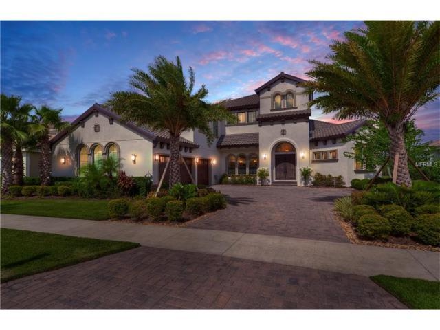 15204 Fishhawk Preserve Drive, Lithia, FL 33547 (MLS #T2908584) :: Arruda Family Real Estate Team