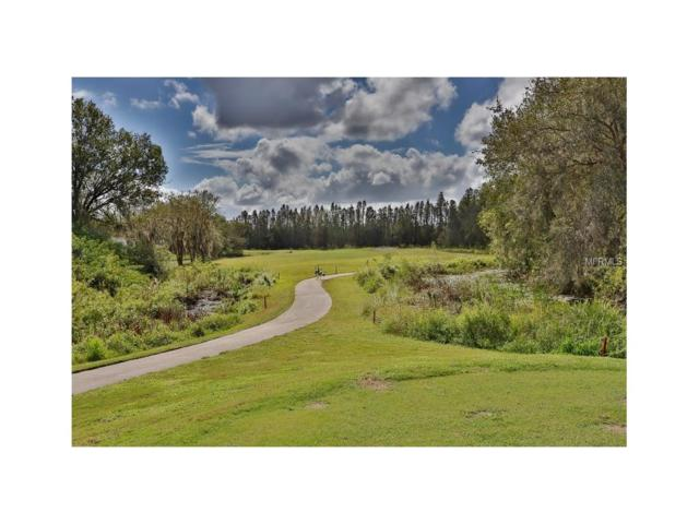7622 Berna Lane, Land O Lakes, FL 34637 (MLS #T2908752) :: Arruda Family Real Estate Team