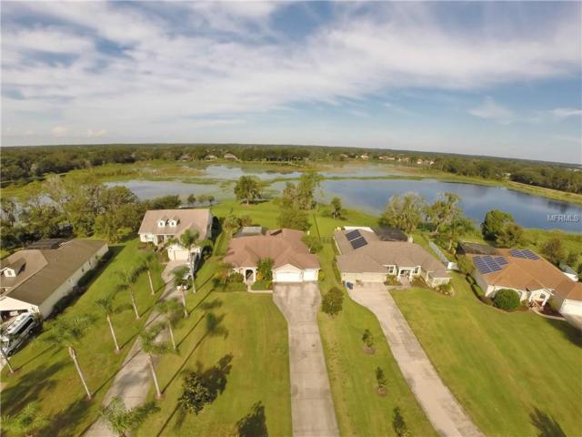 19906 Dolores Ann Court, Lutz, FL 33549 (MLS #T2908823) :: Team Bohannon Keller Williams, Tampa Properties