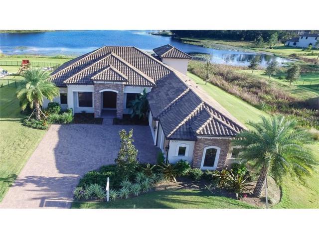 9210 Tillinghast Drive, Tampa, FL 33626 (MLS #T2909576) :: O'Connor Homes
