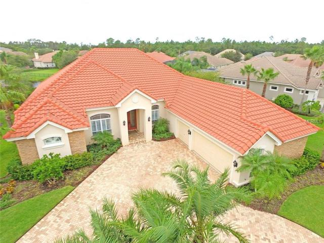 12011 Royce Waterford Circle, Tampa, FL 33626 (MLS #T2909936) :: Griffin Group
