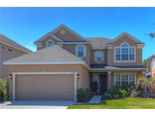 19336 Water Maple Drive, Tampa, FL 33647 (MLS #T2911832) :: Team Bohannon Keller Williams, Tampa Properties