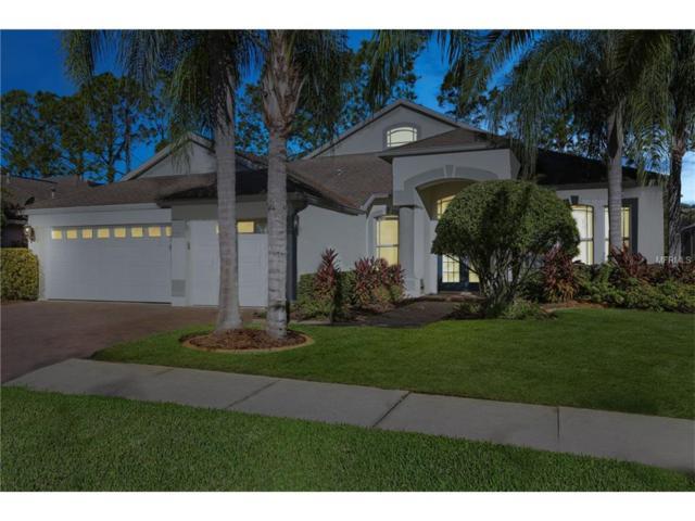 10405 Canary Isle Drive, Tampa, FL 33647 (MLS #T2912533) :: Team Bohannon Keller Williams, Tampa Properties
