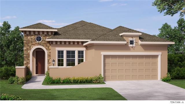 14017 Kingfisher Glen Drive, Lithia, FL 33547 (MLS #T2912797) :: The Lockhart Team